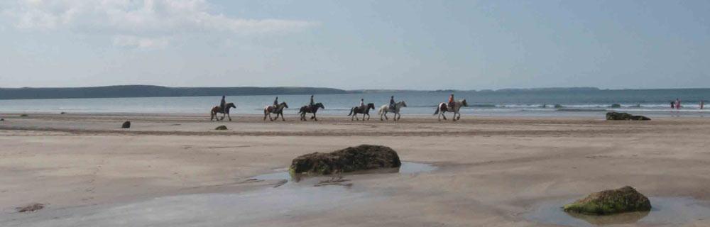 Galloping along Druidstone Beach